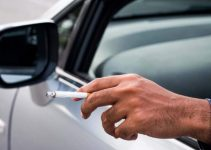 Best Car Air Freshener for Smokers 2021
